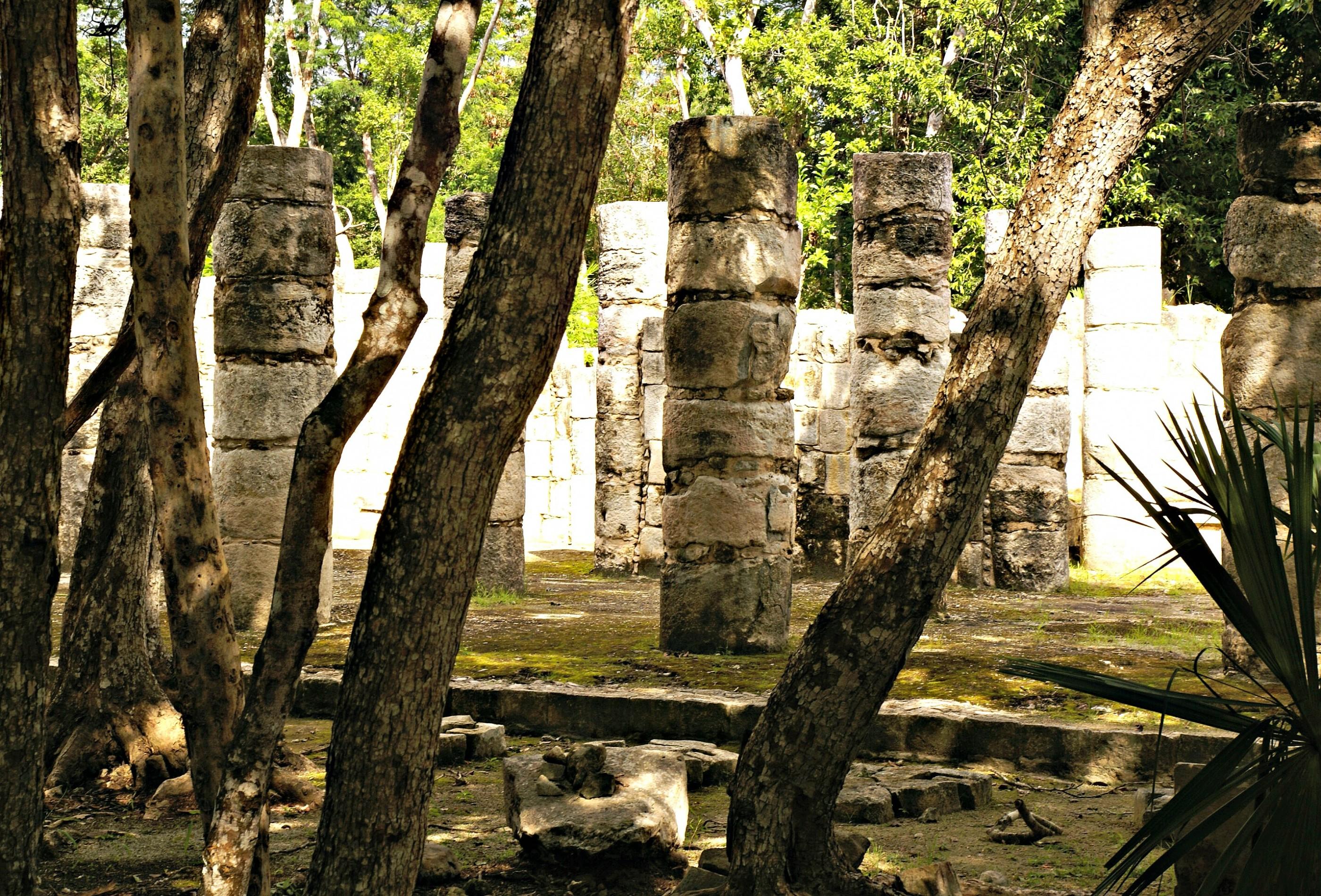 Ruins mixt with the jungle. Photo by Ovidiu Balaj